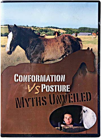 New DVD! Conformation vs Posture - Myths Unveiled