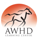 Advanced Whole Horse Dentistry Learning Center